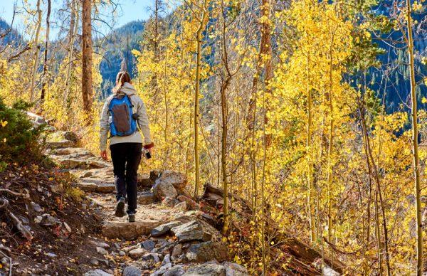 15 fall activity ideas for seniors