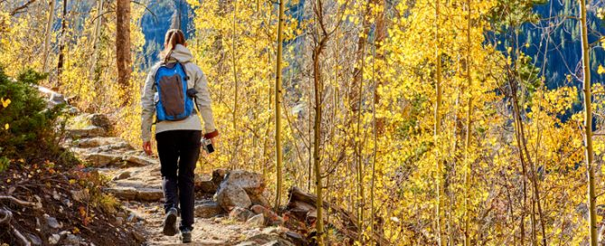 15 fall activity ideas for seniors